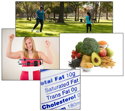 cholesterol collection of photo arrangement